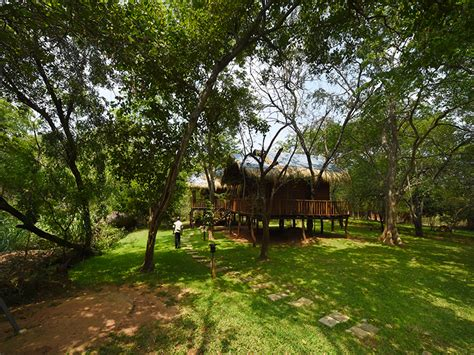 Tree Cottage by Tree Cottages Toc Sri Lanka