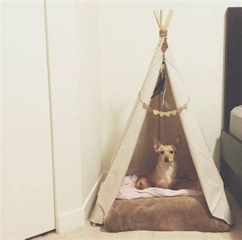 puppy teepee pin by adonia on craftycorner