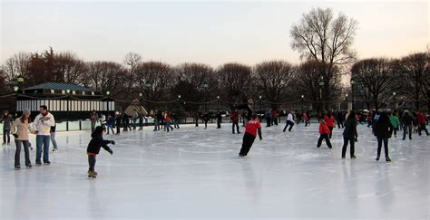 national gallery of sculpture garden rink file nga sculpture garden rink jpg wikimedia commons