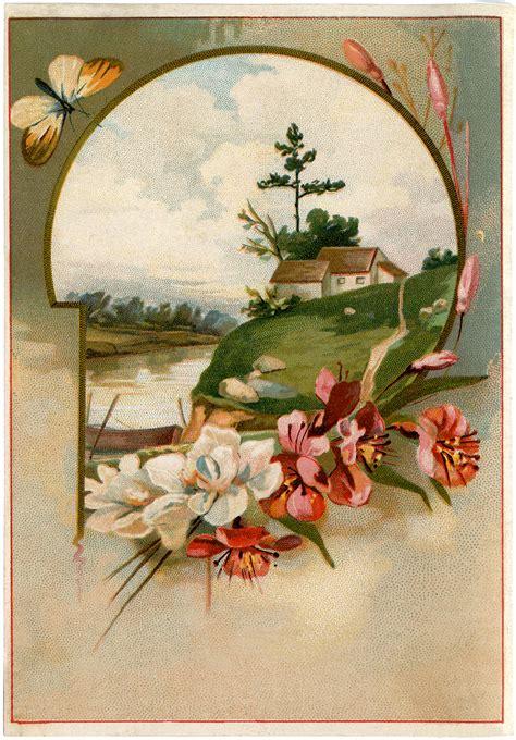pretty floral landscape image  graphics fairy
