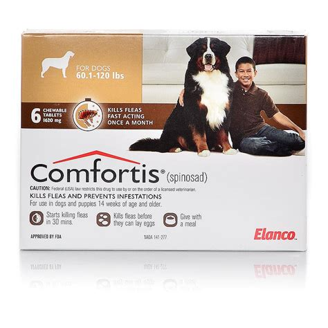 nexgard for dogs 60 120 lbs rx flea or flea tick protection 1st care vets