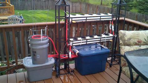 backyard hydroponics system image gallery outdoor hydroponics