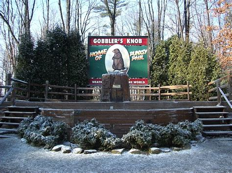 Punxsutawney Phil Gobblers Knob by It S A Beautiful To Stand On Gobbler S Knob In