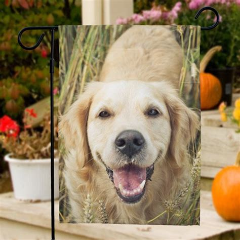 picture perfect pet photo garden flag giftsforyounow