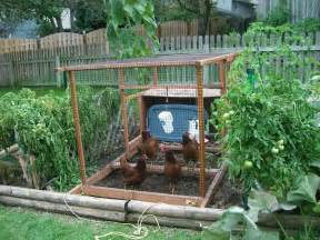 bloombety backyard vegetable garden ideas backyard