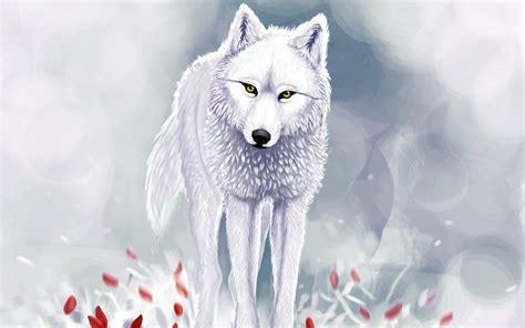 imagenes hd lobos lobo blanco de ojos 193 mbar fondos de pantalla hd