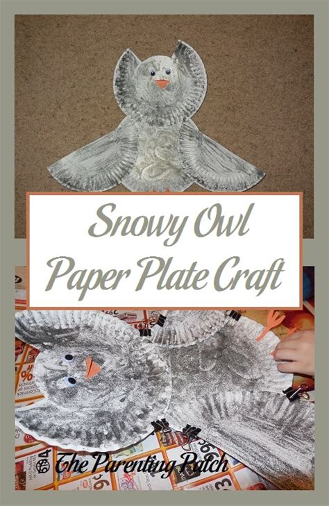 Paper Plate Snowy Owl Craft - snowy owl paper plate craft parenting patch