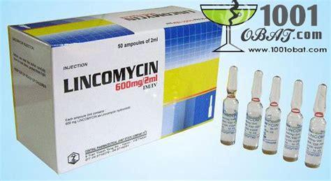 Obat Ponstan obat lincomycin obat dan vitamin kelinci embun daun lincomycin mefinal dan ponstan moko apt