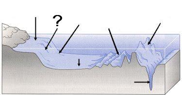 quia ocean floor features sol