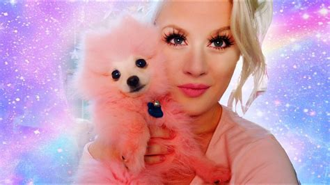 pink puppies pink puppies and letters puppies