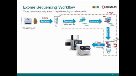 exome sequencing illumina exome sequencing and analysis
