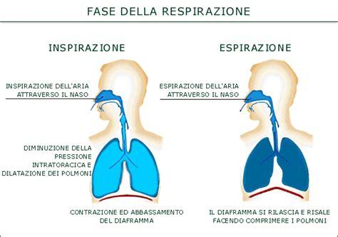 la respirazione polmonare 171 cl sse2 0 di cigliano