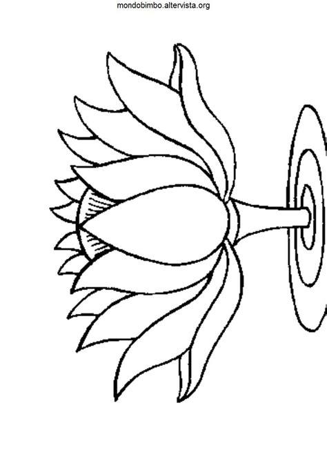 disegni fiore di loto fiore di loto disegno colorato
