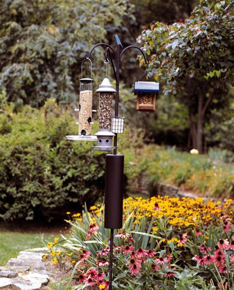 raccoon baffle bird feeder pole birdcage design ideas