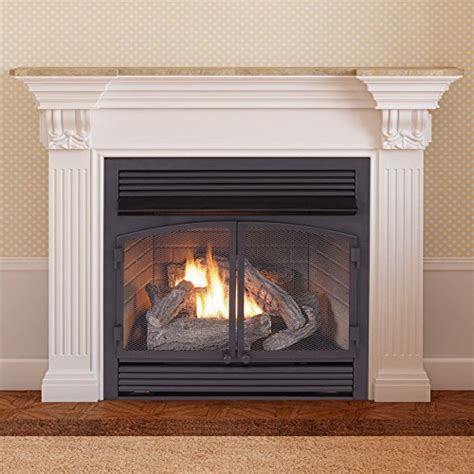 Zero Clearance Gas Fireplace Inserts by Compare Shops Procom Fbnsd400t Zc Zero Clearance Gas