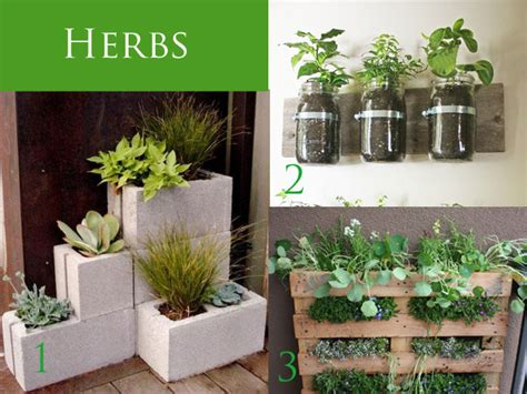 herbs on wall outdoor planters