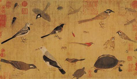 huang quan birds by sketching life chinese bird