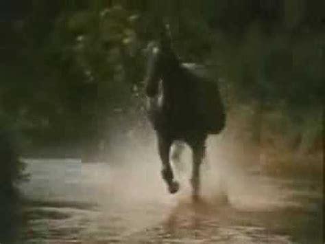 theme music black beauty black beauty theme galloping home denis king 1972
