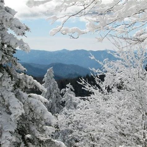 Celebrate Winter Magic In The Great Smoky Mountains In A Charming Rustic Cabin In Gatlinburg Tennessee Fashiontribes Travel by Winter In Pigeon Forge Tn Http Www Pantherknobcottages