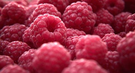 3d Raspberry raspberry fruit 3d model