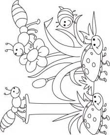 template insects colouring pages