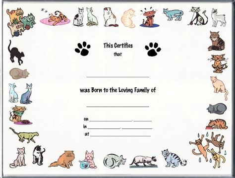 cat birth certificates page