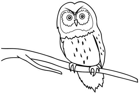 kumpulan gambar hewan untuk anak anak tk paud belajar mewarnai