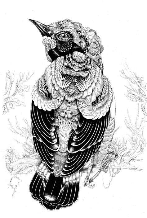 illustration next contemporary creative illustrator iain macarthur