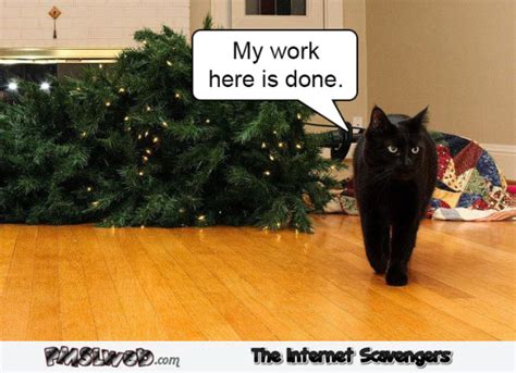 cat on top of christmas tree meme memes and pictures our best of pmslweb
