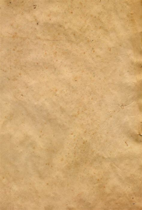 what color is parchment colored parchment paper neiltortorella