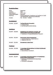 Bewerbungsschreiben Ausbildung It Systemelektroniker bewerbung und lebenslauf kfz mechaniker mechatroniker