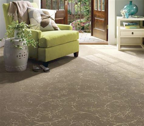 Room Carpet by What Carpet For What Room West Cork Cleaning