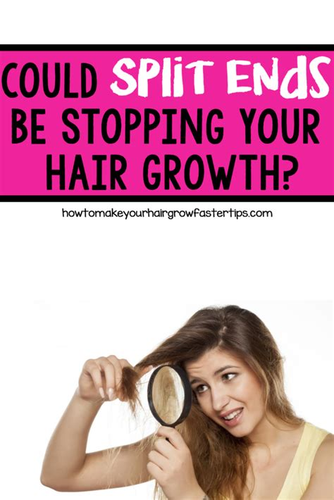 learn things 2 x faster grow your skills like a will my hair still grow if i split ends how to make your hair grow faster tips to grow