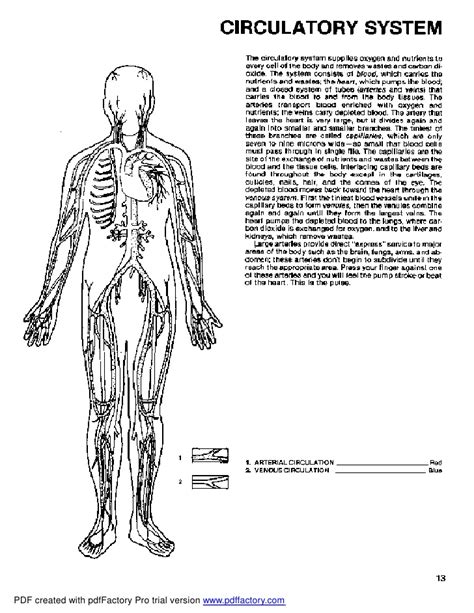 princeton review anatomy coloring book pdf 98 the anatomy coloring book top 10 dental