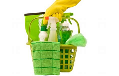Eco Eco Clean And Eco Friendly by 5 Eco Friendly Cleaning Products For Your Green Home