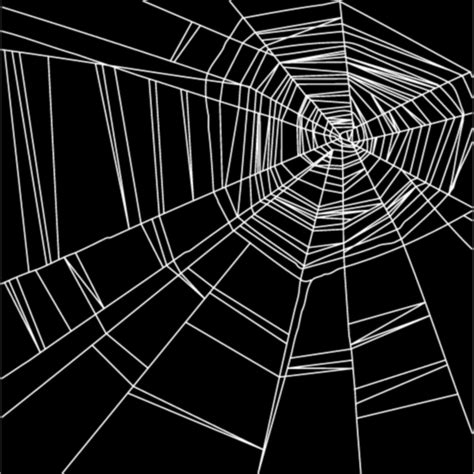 web pattern vector spider web lace with the pattern vector material free