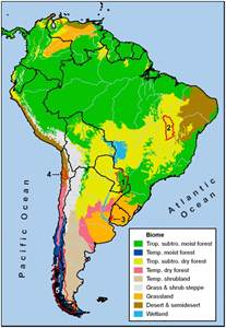 biome map of south america south america climate zones memes