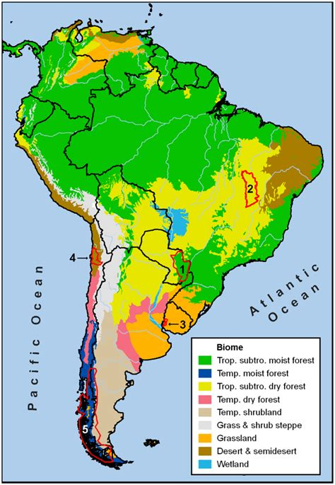 south america climate zones memes