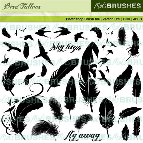 tattoo flash feather 8 latest feather tattoo design sles and design ideas