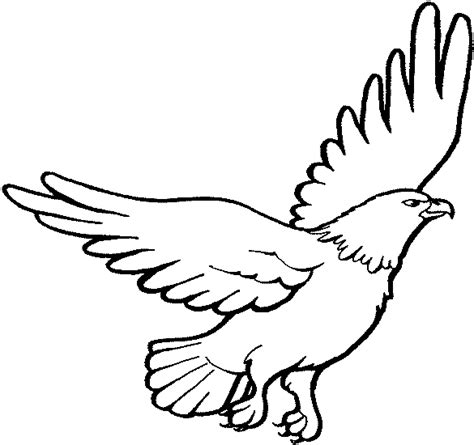 eagle for coloring clipart best