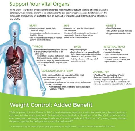 Detox Organs by Support Your Vital Organs Through Cleansing And