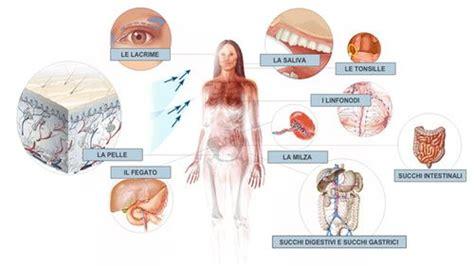 alimentazione giusta nella tiroidite di hashimoto funghi per la tiroidite di hashimoto quali usare cure