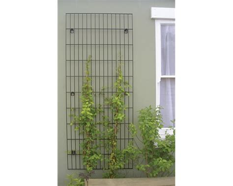 garden wall trellis metal secret garden collection trellis metal trellis jacksons