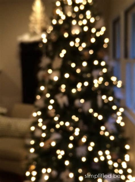 twinkling christmas tree lights images