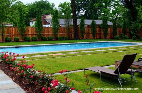 Trees For Privacy In Backyard by Privacy Trees Backyard Oasis Ideas