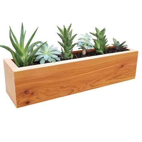 gronomics         succulent planter wood