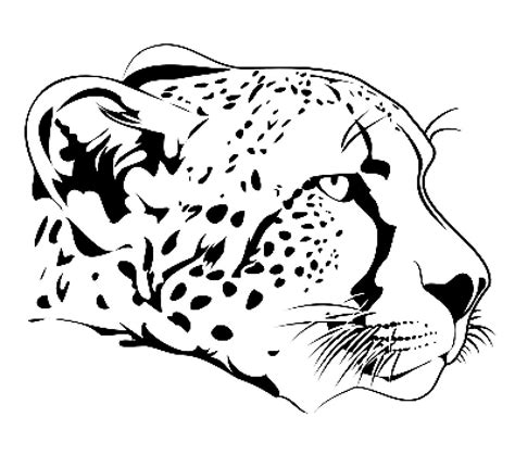 cheetah face coloring page cheetah face coloring page drawings i like pinterest