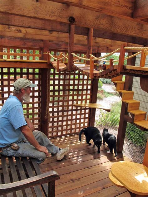 Kandang Kucing Octagon Tingkat pin by stacey prince on outdoor cat enclosures