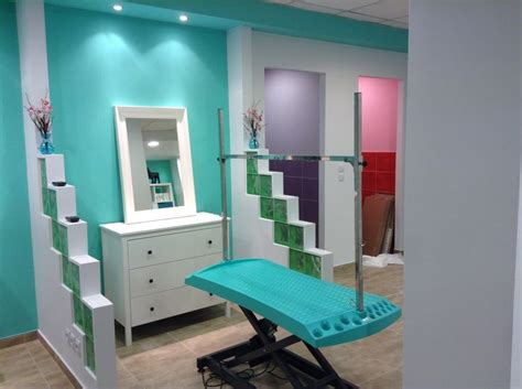 puppy salon 25 best ideas about grooming salons on grooming pet grooming and