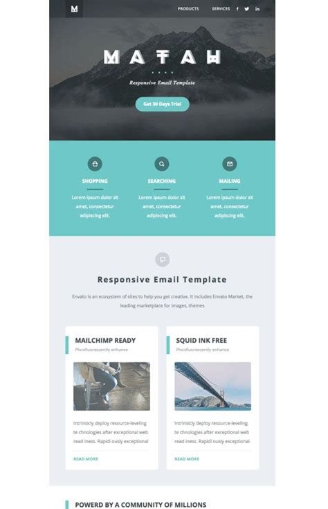 email template ideas 17 best ideas about newsletter exle on